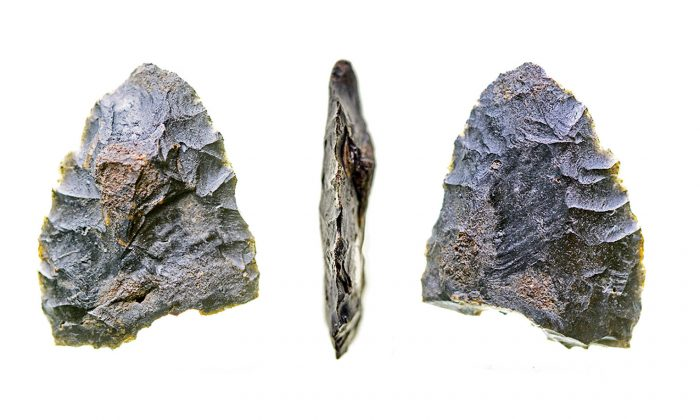 """""""The stone tools and faunal remains at the site show that at 14,550 years ago, people knew how to find game, fresh water, and material for making tools,"""" says Michael Waters. """"These people were well-adapted to this environment. The site is a slam-dunk pre-Clovis site with unequivocal artifacts, clear stratigraphy, and thorough dating."""" (Texas A&M University)"""