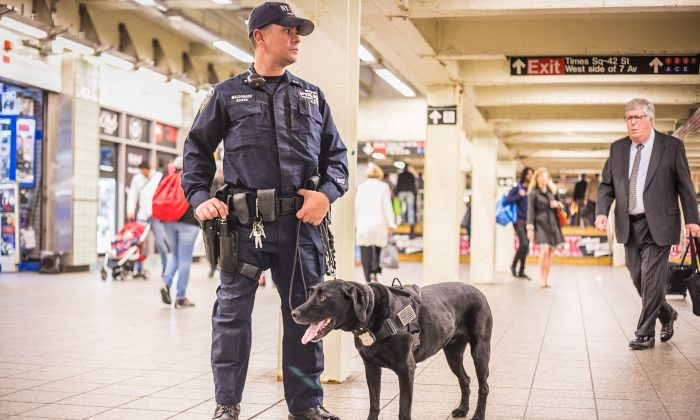 NYPD Officer Horacio Maldonado with his K9 partner, Raychel, on patrol at the Times Square subway station in New York on May 17, 2016. (Benjamin Chasteen/Epoch Times)