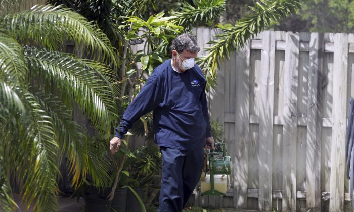 In this photo taken April 12, 2016, Giraldo Carratala, an inspector with the Miami- Dade County, Fla. mosquito control unit, sprays pesticide in the yard of a home in Miami, Fla. (AP Photo/Lynne Sladky)