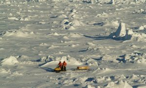 NASA: Antarctic Sea Ice Is Increasing and Arctic Ice Is Melting—Here's Why