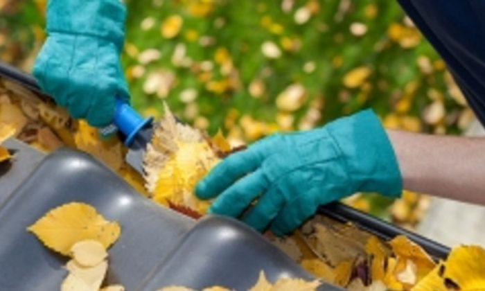 A stock photo of a person cleaning leaves from a gutter. (Energy.gov)