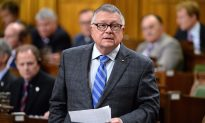 Goodale Rejects Call to Change Classification of AR-15 Rifle