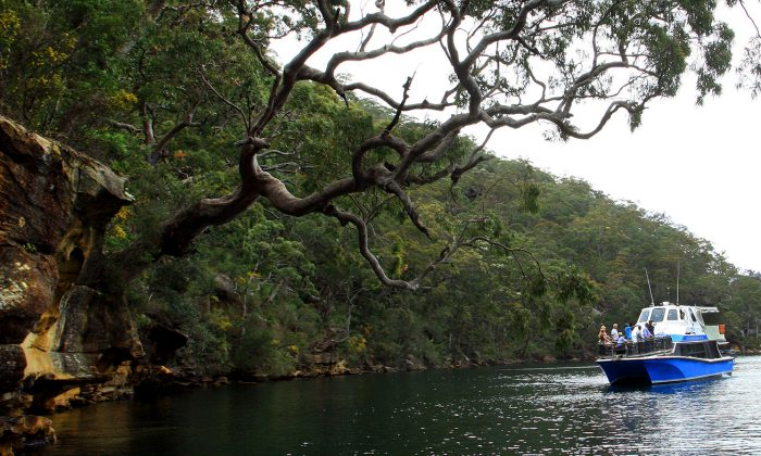 The Sydney Outback Experience cruise on the Hawkesbury River. (Courtesy of Sydney Outback)