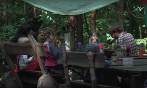 Kindergartens in the Forest Allow Children to Sync With Nature