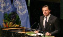 Leonardo DiCaprio Puts $15.7M Into Environmental Causes