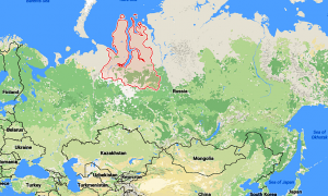 After Anthrax Outbreak, Russian Officials Evacuate Nomads, Send Military Planes