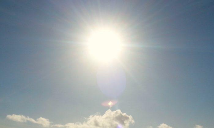 Brightly shining sun. (Bluebells 2008|Flickr|CC BY 2.0)