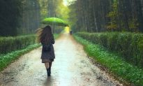 There's a Surprising Link Between Rain and Soil