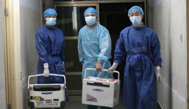 Chinese doctors carry fresh organs for transplant