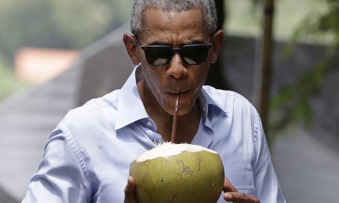 U.S. President Barack Obama drinks from a fresh coconut along the banks of the Mekong River in the Luang Prabang, Laos, Wednesday, Sept. 7, 2016. (AP Photo/Carolyn Kaster)