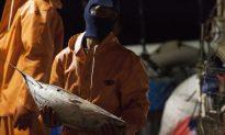 Fishermen Who Fled Slavery in San Francisco Sue Boat Owner