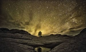 Light Pollution Blinds the Soul