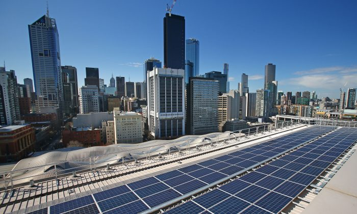 Solar panelson the rooftop at AGL's Docklands office  in Melbourne, Australia, on Aug. 20, 2015. (Scott Barbour/Getty Images)