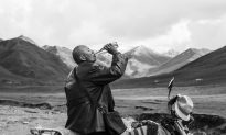 Film Review: 'The Two Horses of Genghis Khan'