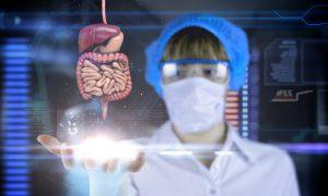 The Fungal Etiology of Inflammatory Bowel Disease
