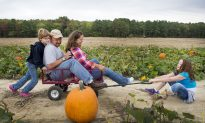 10 Family Fun Ideas to Fall for in October