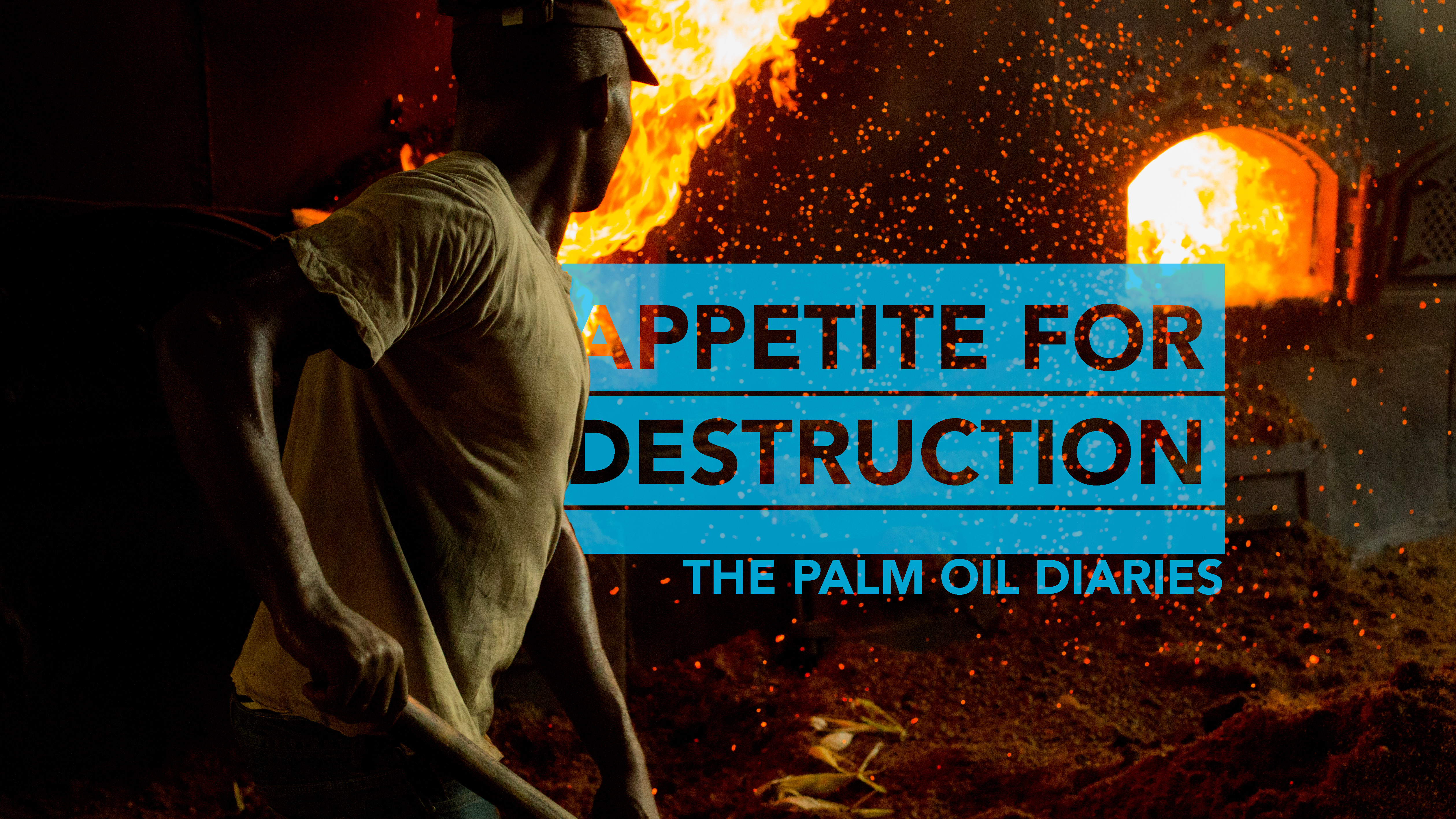 """The poster for Michael Dorgan's documentary, """"Appetite for Destruction: The Palm Oil Diaries."""" (Courtesy of Michael Dorgan)"""