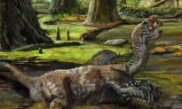 'Saddest' Dinosaur Fossil Found Shows Struggle Before Death (Video)