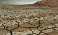 2016 Is 'Very Likely' to Be Hottest Year on Record (Video)