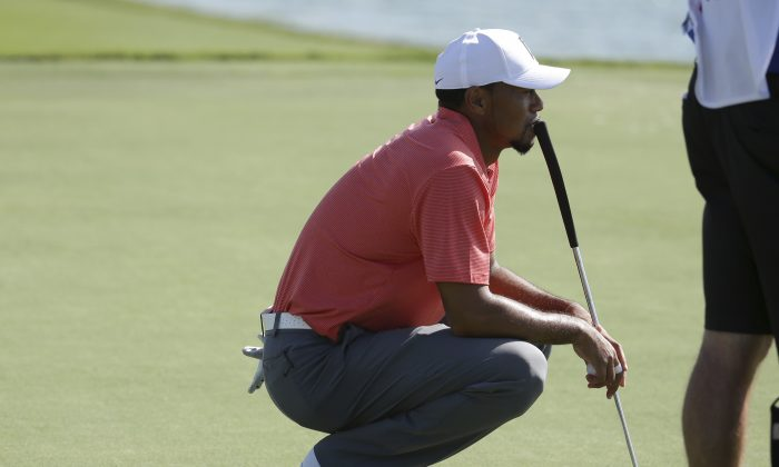Tiger Woods waits to putt on the 17th green during the Pro-Am at the Hero World Challenge golf tournament, in Nassau, Bahamas. (AP Photo/Lynne Sladky)