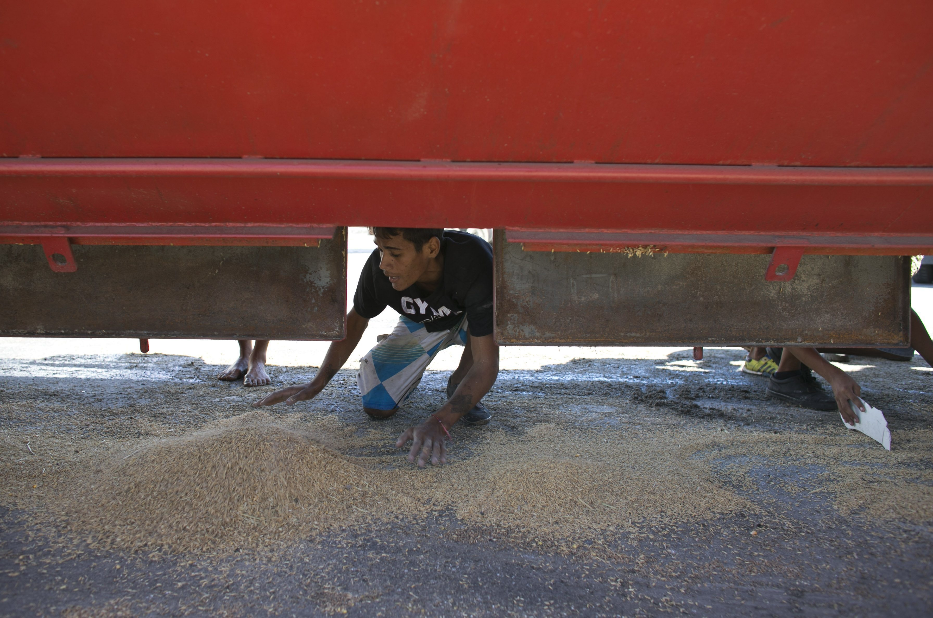 A young man collects rice that fell from a cargo truck waiting to enter the port and refill in Puerto Cabello, Venezuela on Nov. 14, 2016. (AP Photo/Ariana Cubillos)