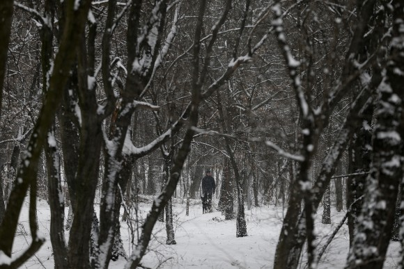 A man with a dog walks through a snow covered park on a cold winter day in Belgrade, Serbia on Jan. 9, 2017. (AP Photo/Darko Vojinovic)