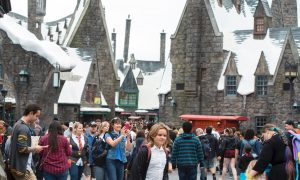 Harry Potter Fans Celebrate 20 Years Since First Book Published