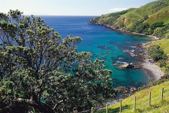 One of many beautiful vistas along the Coromandel coastline. (The Coromandel)