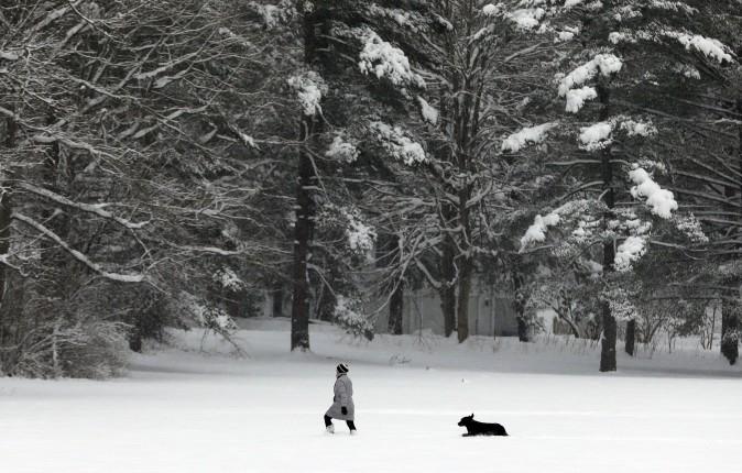 A woman walks with her dog in a field of fresh snow in Gates Mills, Ohio, on Jan. 31, 2017. (AP Photo/Tony Dejak)