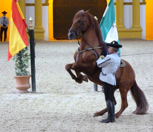 A dancing horse at the Royal Andalusian School of Equestrian Art. (Manos Angelakis)