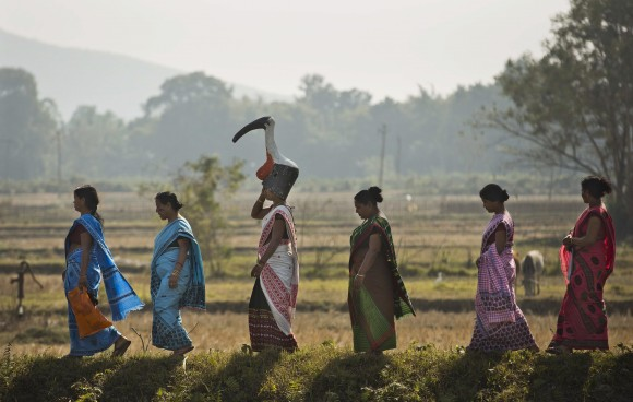 "A group of women from the ""hargila army"" walk to attend an awareness meeting on protecting the Greater Adjutant Stork in Dadara village, west of Gauhati, India, on Feb. 4, 2017. (AP Photo/Anupam Nath)"