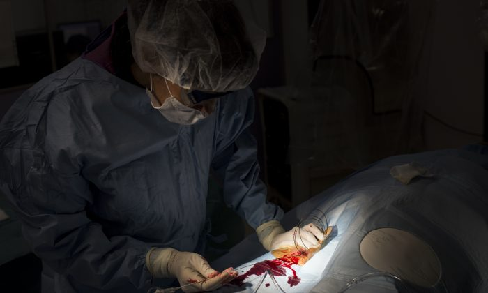 A doctor operates a patient in this file photo. (FRED DUFOUR/AFP/Getty Images)