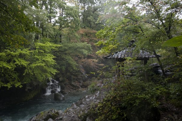 On the shores of the Kanman-ga-fuchi gorge in Nikko. (Annie Wu/Epoch Times)