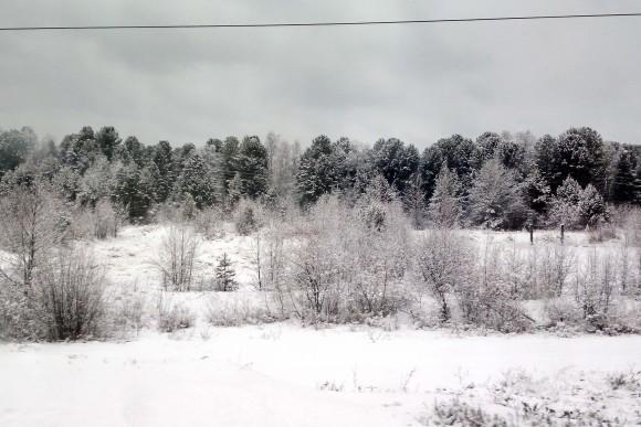Siberia from the train. (Vlatka Jovanovic)