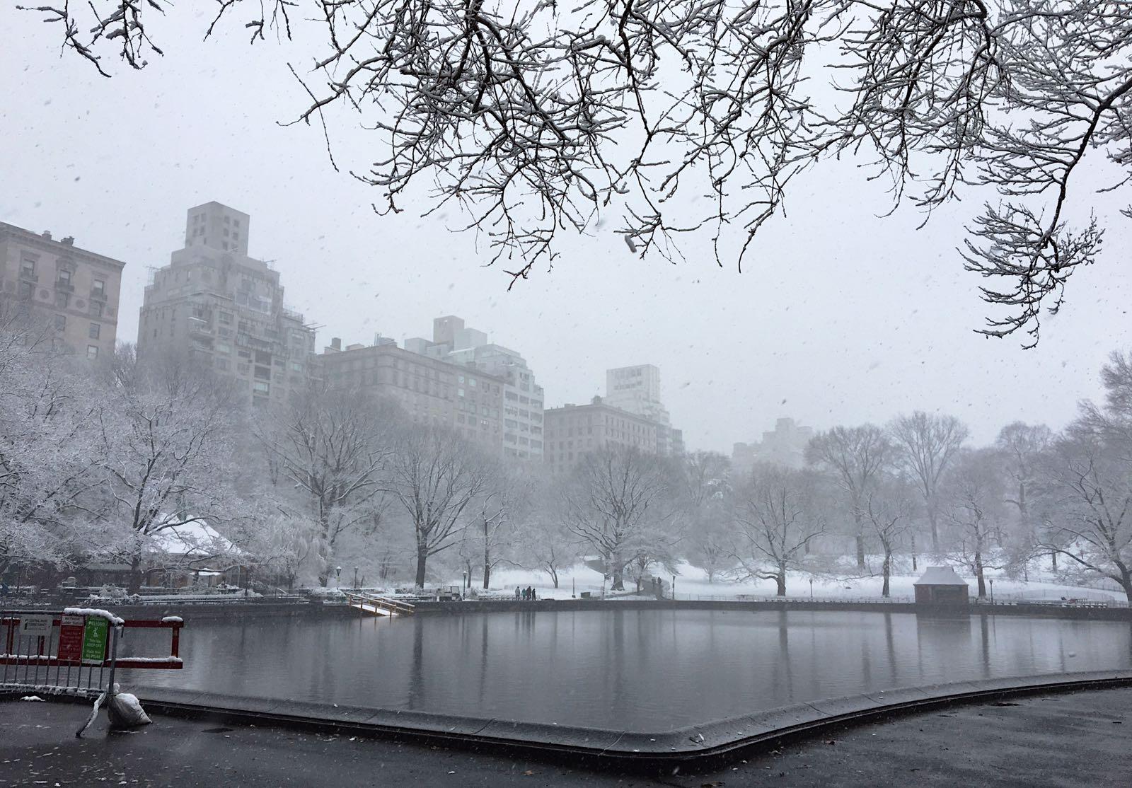 Central Park in New York. (Photo by Ceyda Erdinc)