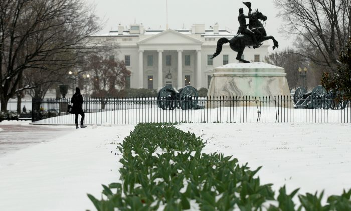Flowers protrude from the snow as a woman stops to gaze out at the White House from Lafayette Park in Washington, U.S. on March 14, 2017. (REUTERS/Kevin Lamarque)