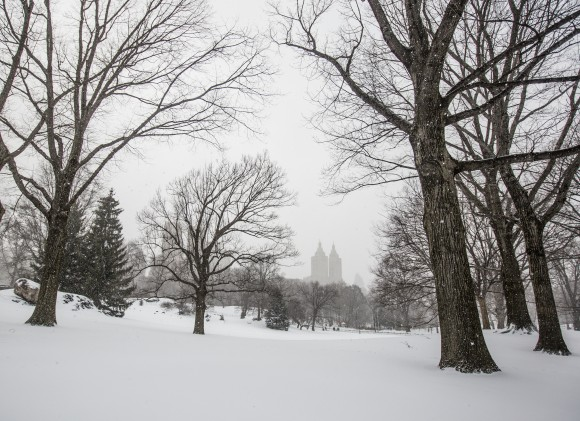 Central Park in New York on March 14, 2017. (Samira Bouaou/Epoch Times)
