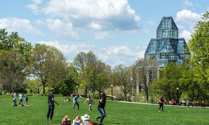 Major's Hill Park in downtown Ottawa. The glass and granite building is the National Gallery of Canada. (James Peltzer)