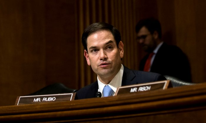 Sen. Marco Rubio (R-FL) during a Senate Foreign Relations Committee business hearing on Capitol Hill in Washington on Jan. 21, 2017. (Drew Angerer/Getty Images)