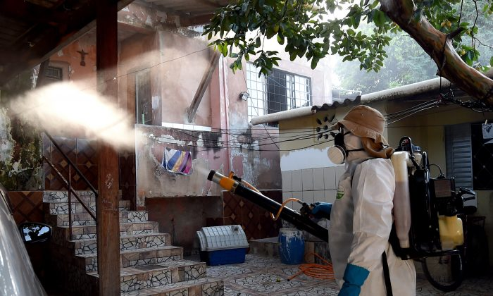 A member of the National Health Foundation fumigates against the Aedes aegypti mosquito, vector of the dengue, chikungunya fever and Zika viruses, in Gama, Brazil, on Feb. 17, 2016. (EVARISTO SA/AFP/Getty Images)