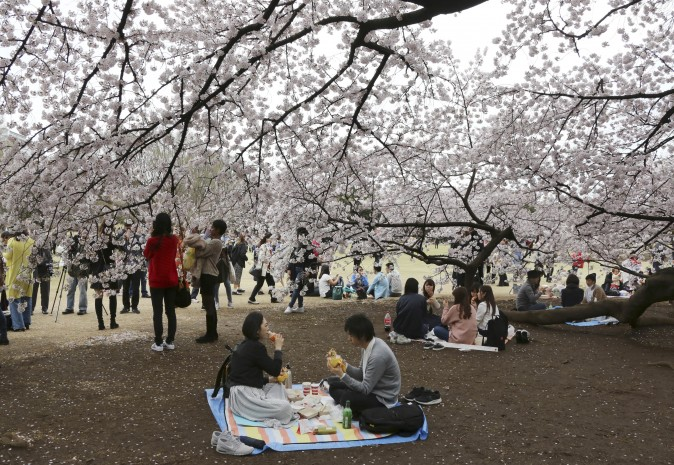 People enjoy a lunch under blooming cherry blossoms at the Shinjuku Gyoen National Garden in Japan on April 7, 2017. (AP Photo/Koji Sasahara)
