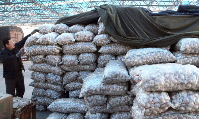 A vendor arranges bags of garlic in a vegetable wholesale market in Binzhou in east China's Shandong province on Jan. 18, 2016. Garlic powder spiked with talc is just one of the many examples of food fraud. (The Canadian Press/AP-Chinatopix, China Out)