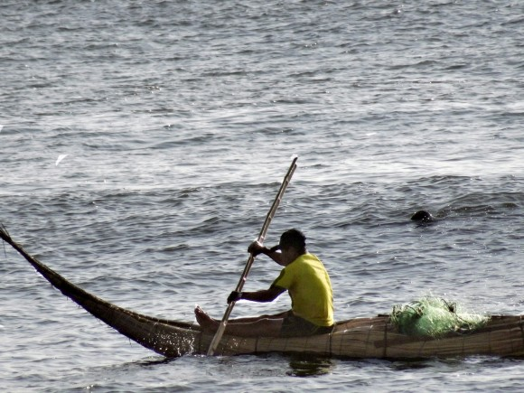 Riding the surf in a caballito de totora, a traditional boat made from reeds. (David Lawes)