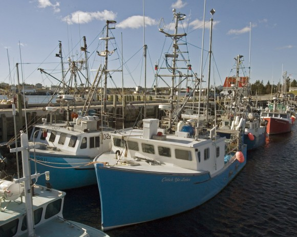 Fishing boats are moored at the government wharf in Sambro, Nova Scotia, in this file photo. The fish and seafood industry came up frequently in auditor general Michael Ferguson's audit of the temporary foreign worker program. (CP PHOTO/Andrew Vaughan)
