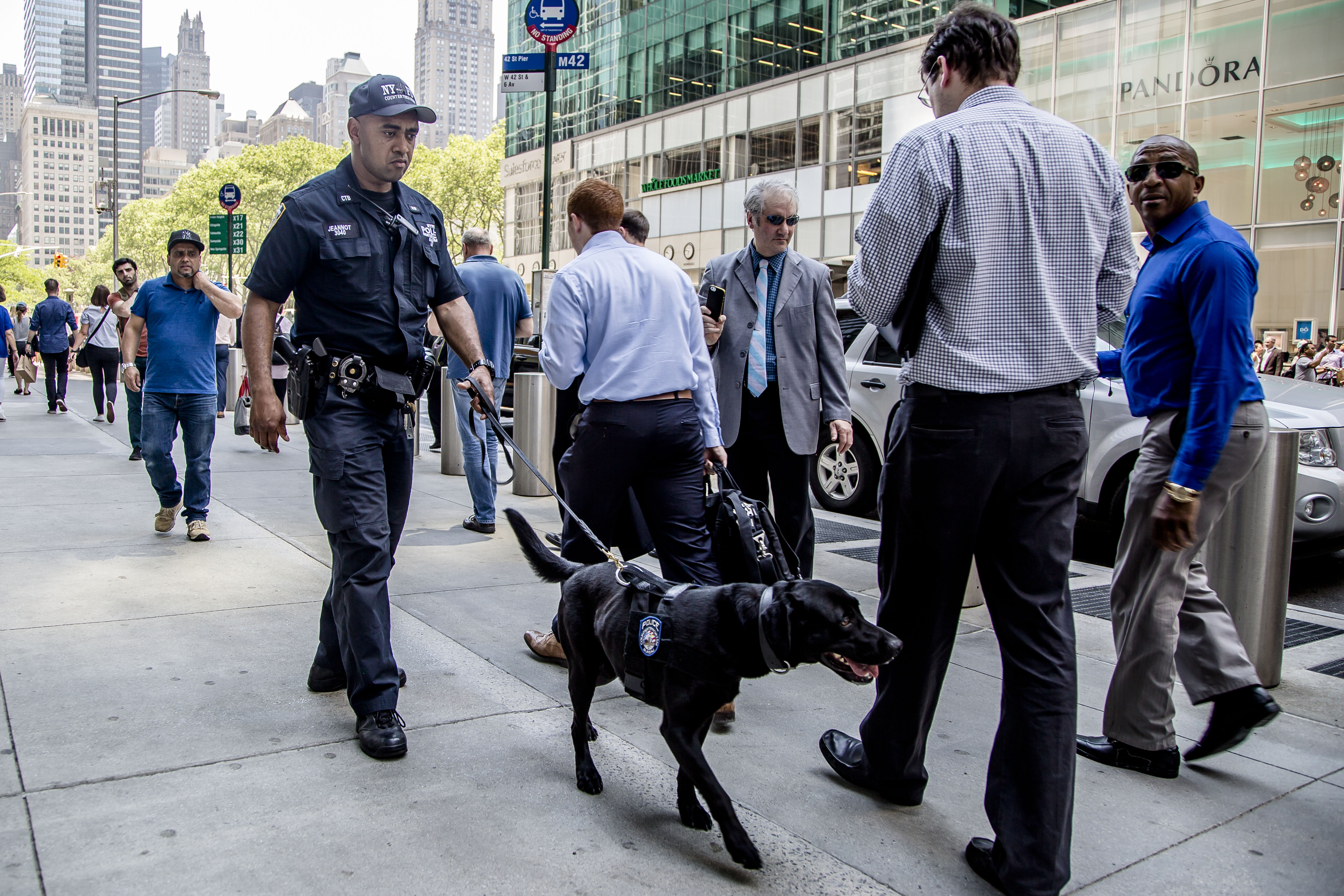 An NYPD officer with his K-9 unit inspects the area near where a vehicle struck pedestrians and crashed in Times Square, New York, on May 18, 2017. (Samira Bouaou/The Epoch Times)
