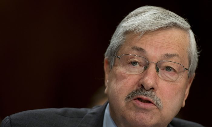 Former Iowa governor Terry Branstad testifies before the Senate Foreign Relations Committee on his nomination to be ambassador to China, on Capitol Hil,l in Washington on May 2, 2017. (Jim Watson/AFP/Getty Images)
