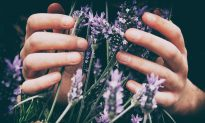 Aromatherapy for Beginners: Scents to Uplift, Balance and Calm
