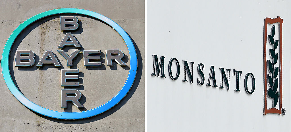 (COMBO) This combination of file pictures created on September 14, 2016 shows the logo of German pharmaceutical giant Bayer (L, on September 8, 2016 in Leverkusen) and the logo of Monsanto at it's Belgian manufacturing site and operations centrer on May 24, 2016 in Lillo near Antwerp.  (PATRIK STOLLARZ,JOHN THYS/AFP/Getty Images)