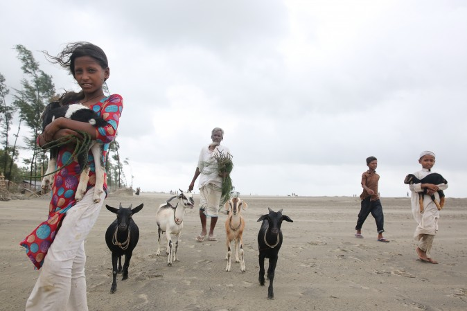 Villagers and their livestock evacuate to a storm shelter on the coast in Cox's Bazar district in Bangladesh on May 30, 2017. Cyclone Mora hit Bangladesh on May 30, packing winds of up to 135 kilometres (84 miles) per hour, damaging thousands of homes. (-/AFP/Getty Images)