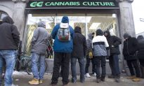 CMAJ: Age Limit in Legalized Pot Plan Will Put Young People at Risk